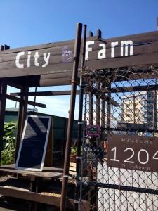 CityFarm 1