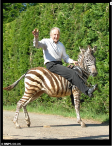 Bill Turner riding a zebra to the pub