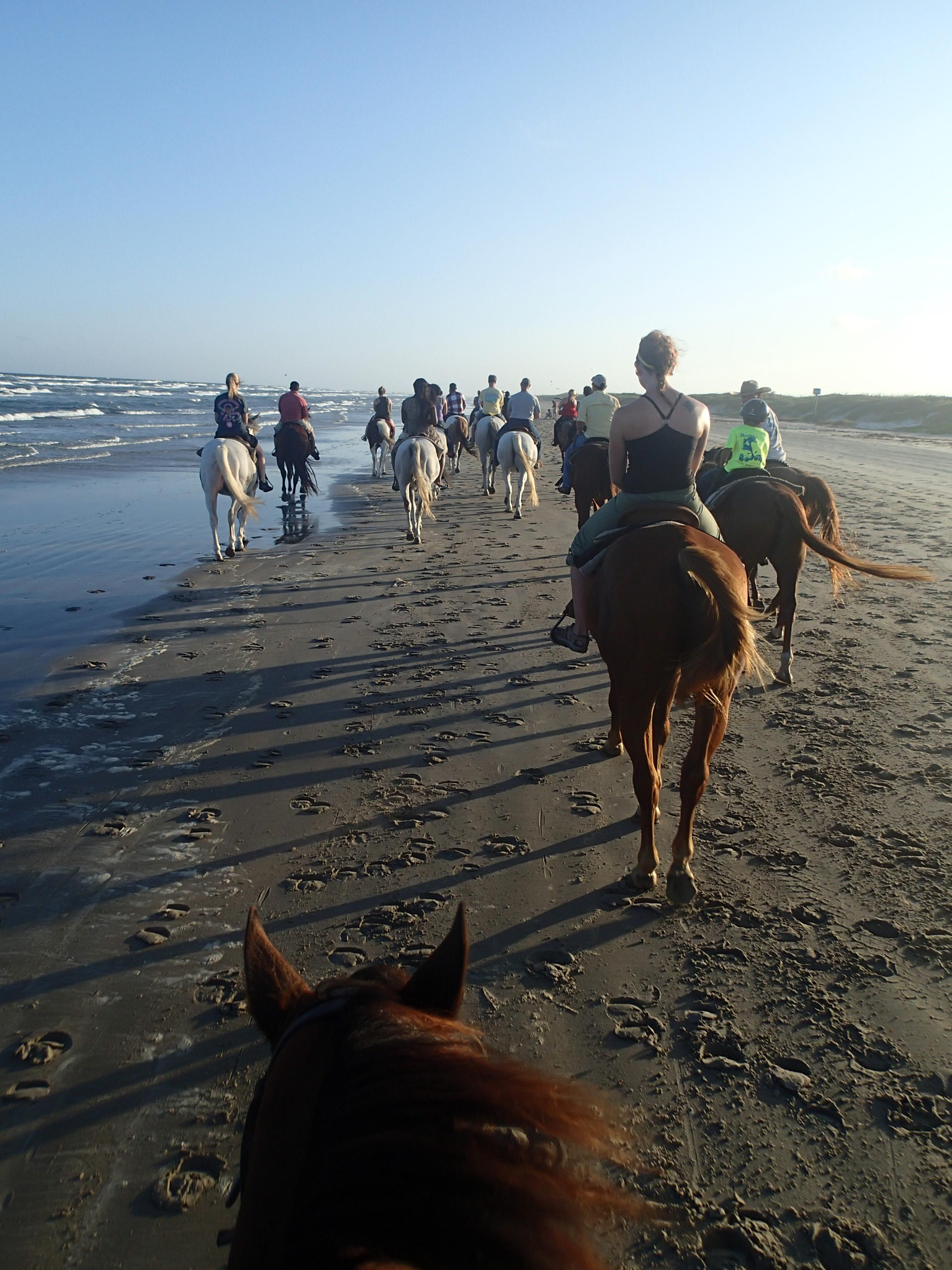 Horseback riding corpus christi area