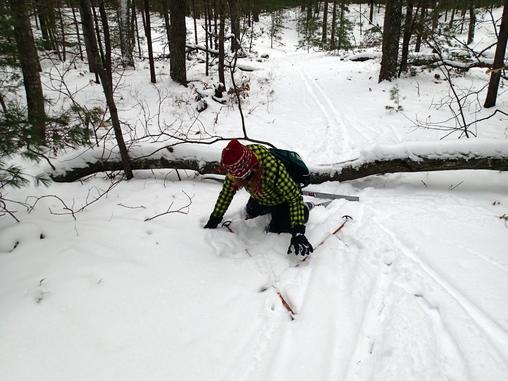 Alyssa v. tree roots on skis